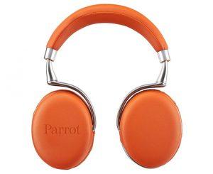 chollo-parrot-8