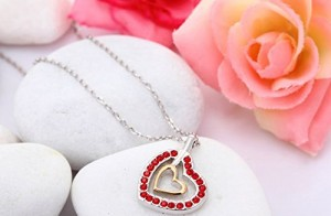 chollo corazon 2