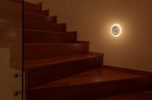 chollo luz 2