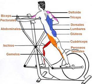 chollo bici eliptica 3