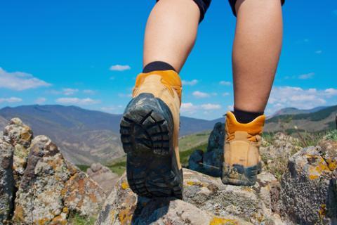 Marrones Con Tex Por Membrana Timberland Chocorua Trail Gore Botas TlJcF1K