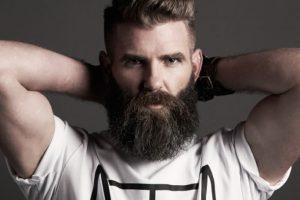 chollo-cepillo-barbas-1