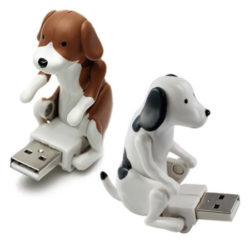 La memoria USB del perro muy afectuoso desde 8,88€.