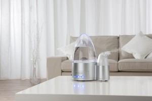 chollo humidificador 3
