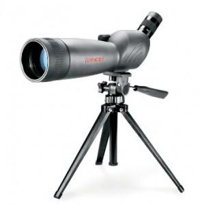 chollo telecopio 1
