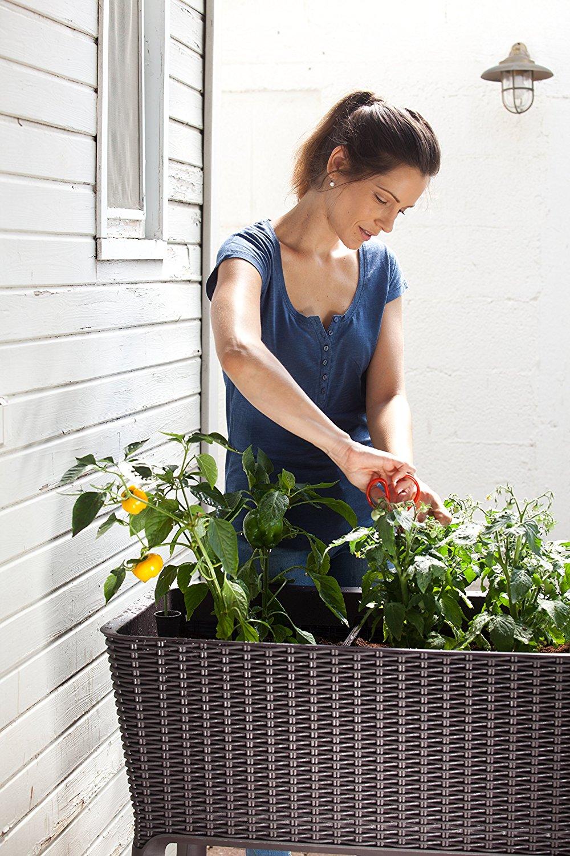 Huerto urbano keter easy grow por 74 44 chollos for Ofertas terrazas easy