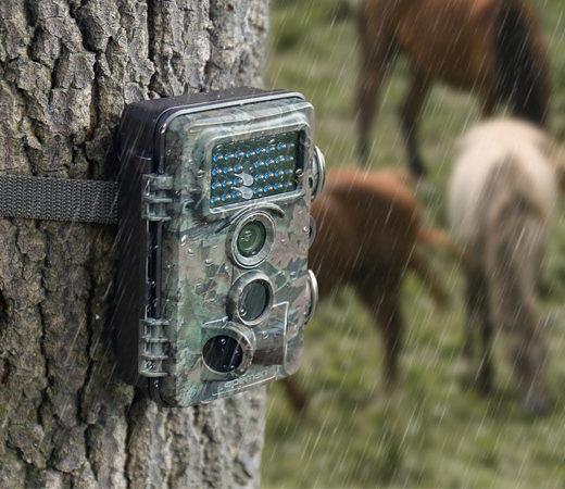 Cámara de vídeo vigilancia Motorola FOCUS86T wifi con detección de