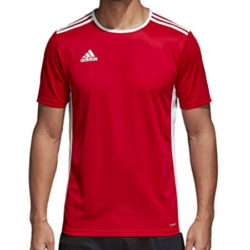 Camiseta Adidas Entrada 18 JSY de manga corta por 10,99€