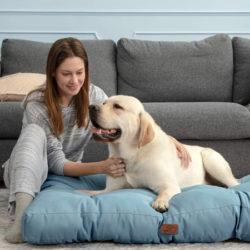 CAma de invierno para perros Bedsure 76x50x10cm por 16,49€ antes 32,99€; resto de tallas 50%.
